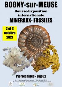 Beca de exposición internacional de minerales fósiles