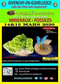 19 ° Intercambio internacional Gohellium 2020 de minerales fósiles