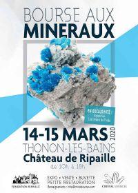 6to intercambio de minerales y fósiles
