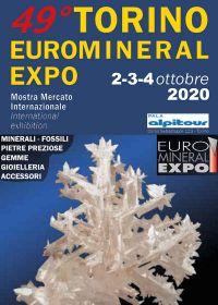 49a Exposición Euro Mineral de Turín