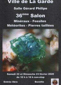 36º intercambio de minerales y fósiles