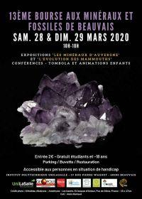13 ° intercambio de minerales y fósiles