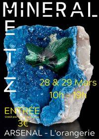 Feria de minerales, fósiles y gemas.