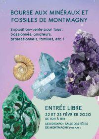 34 intercambio de minerales y fósiles