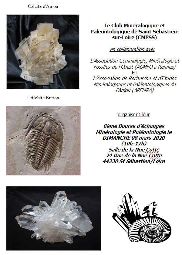 8º intercambio de minerales y fósiles