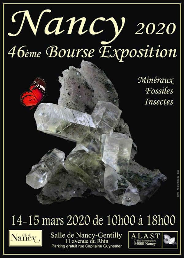 46ª exposición bursátil de minerales e insectos fósiles.