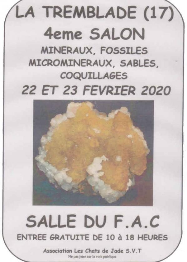 4 feria de minerales, fósiles, microminerales, conchas y arena.