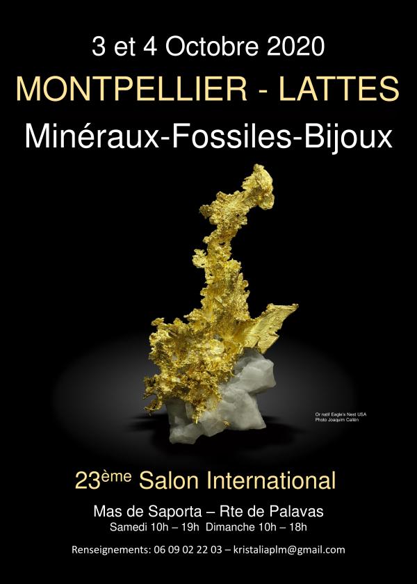 Intercambio internacional Minerales Fósiles piedras cortadas Lattes Montpellier