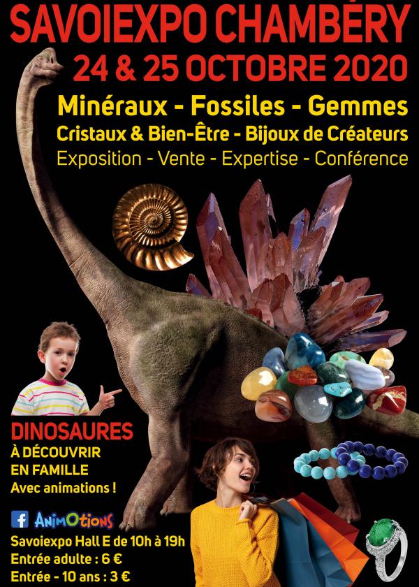 Minéralexpo Chambéry Minerales Fósiles Gemas