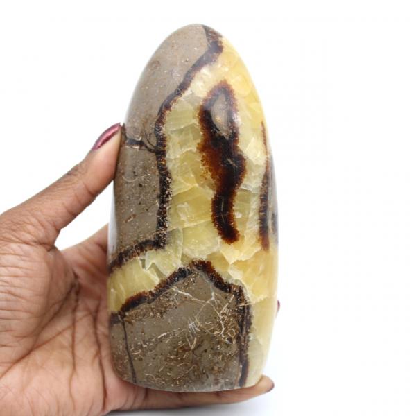 Piedra septaria pulida
