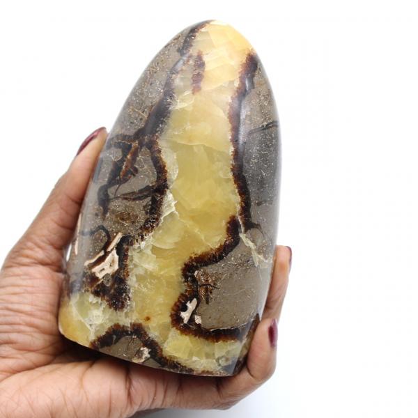 Roca septaria