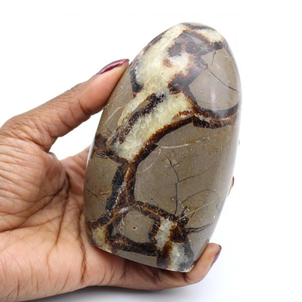 Roca septaria pulida